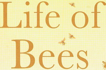 secret-life-of-bees